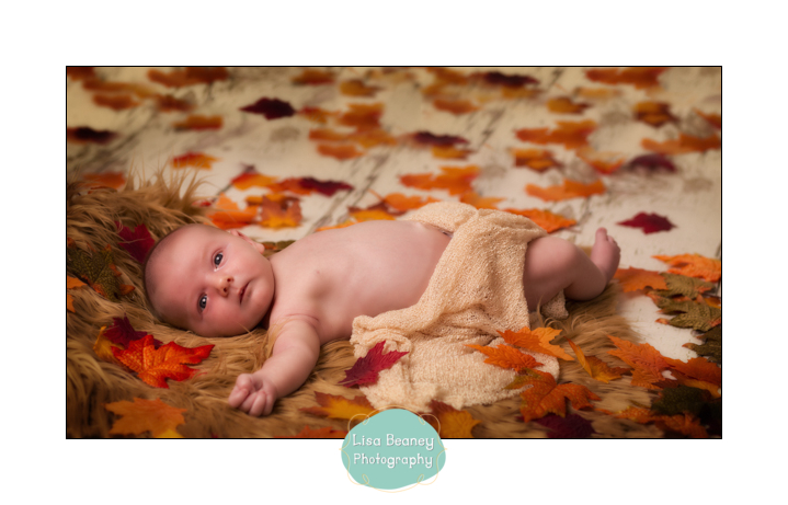 Newborn Photographer Sussex