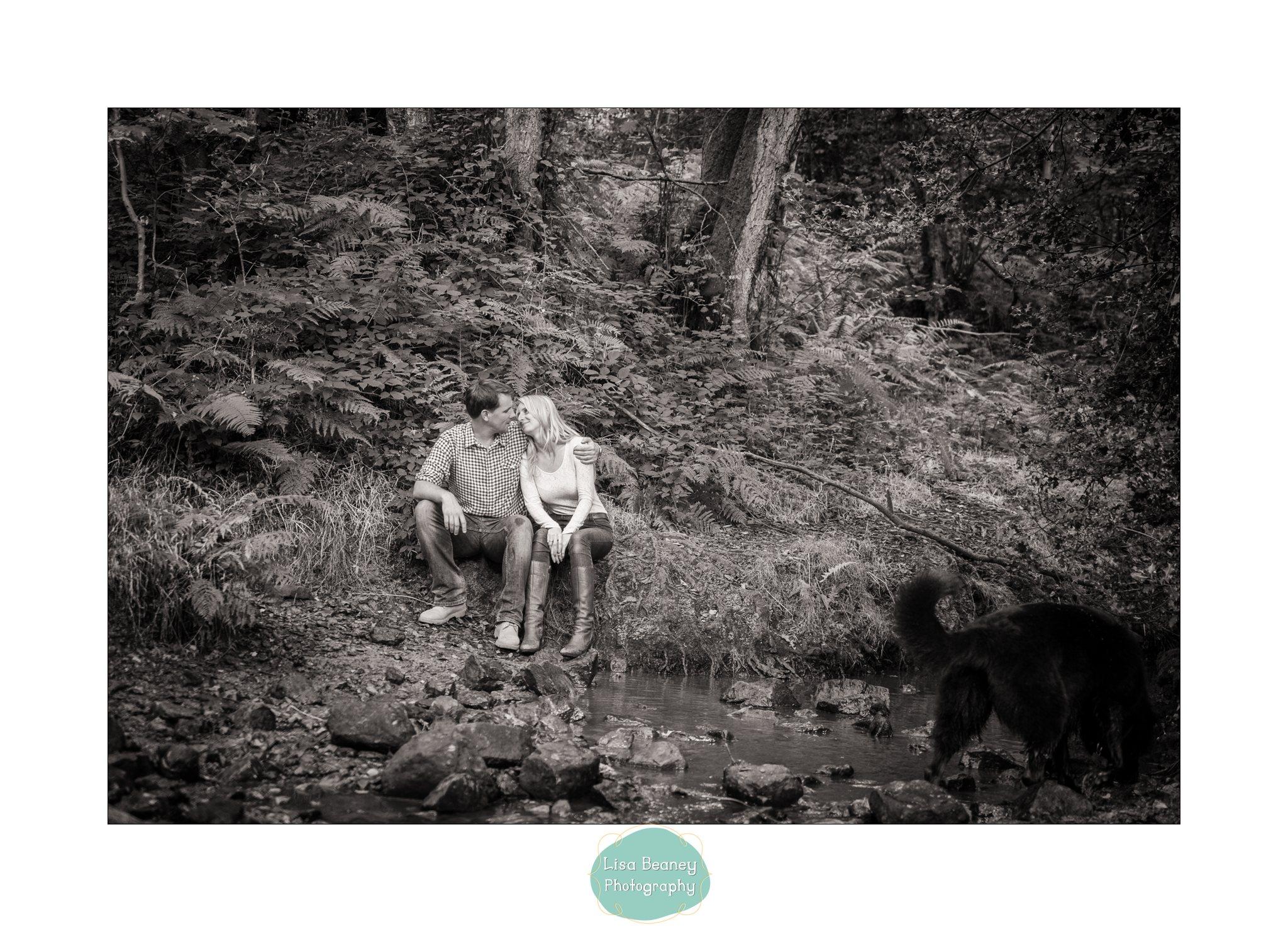 Ashdown Forest Portrait